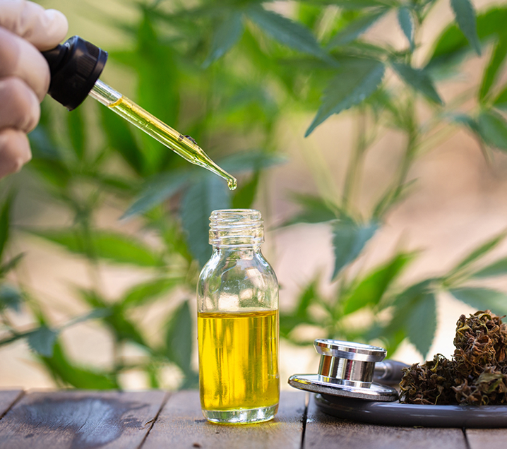 CBD Boosts the Endocannabinoid System